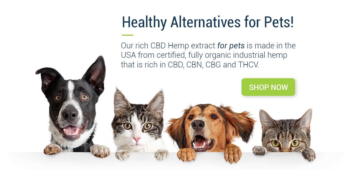 Banner Pets