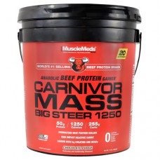 Carnivor Mass Big Sterr 1250, Chocolate Fudge, 15 lb (6820g)